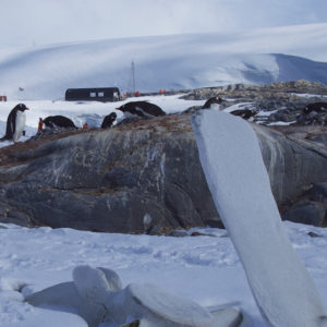 Port Lockroy-Antarctica