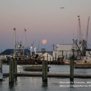 Gallants Channel Moonset