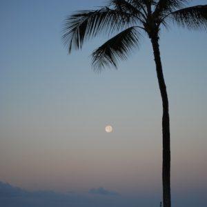 Ala Moana Moonset