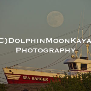 Moon over the Sea Ranger