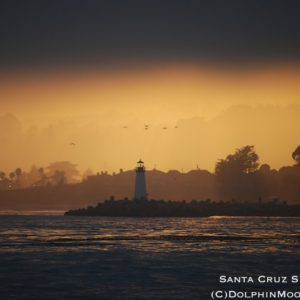 Santa Cruz Sunset