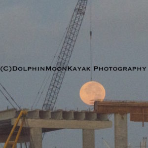 Lunar Construction